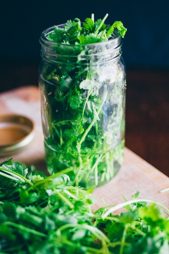 Tired of wasting cilantro? Cut the stems and store the leftovers in a jar with a little water and it'll last you weeks!
