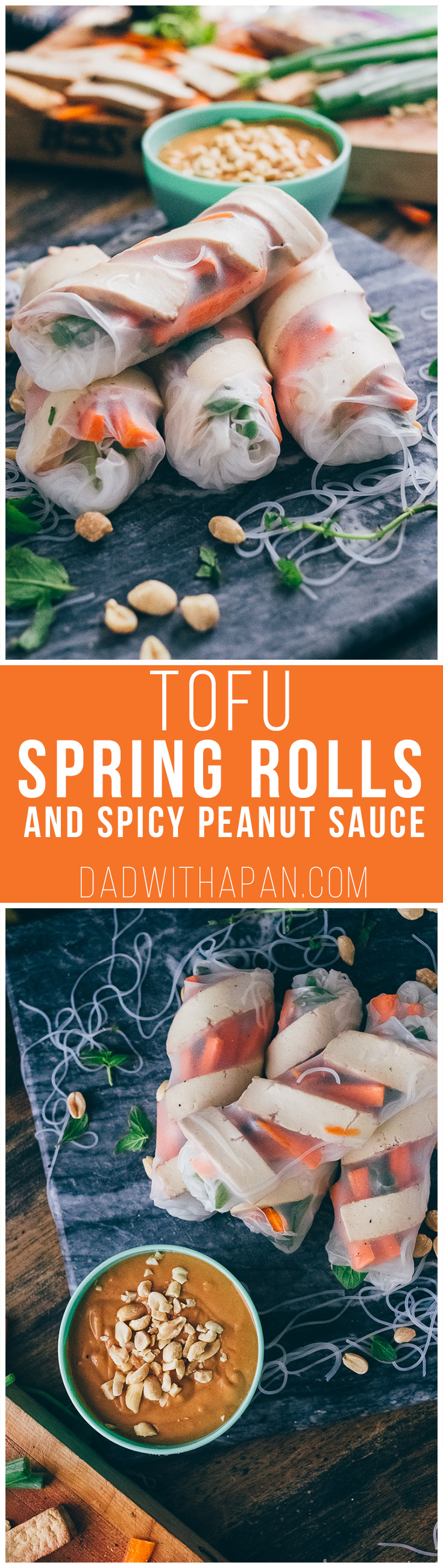 Sesame Ginger Tofu Spring Rolls With Spicy Peanut Sauce