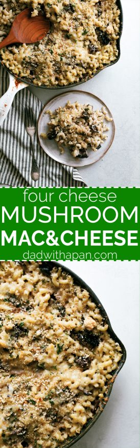 This portobello mushroom mac and cheese recipe is what dreams are made of. Loaded with four different kinds of cheese and hearty portobello mushroom.
